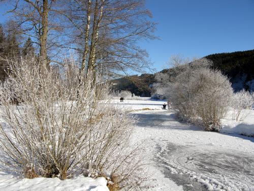 1.-Der Seebach oberhalb des Titisees