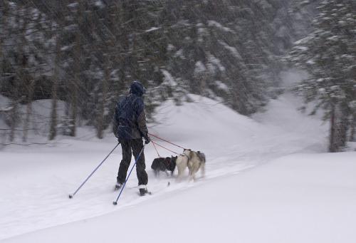 20.-Heavy snow... (3226022351)