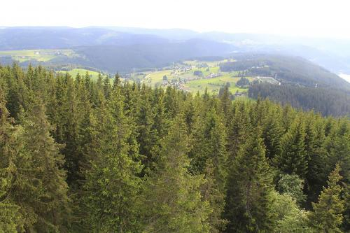 24.-Aussicht Hochfirstturm 20062016 K