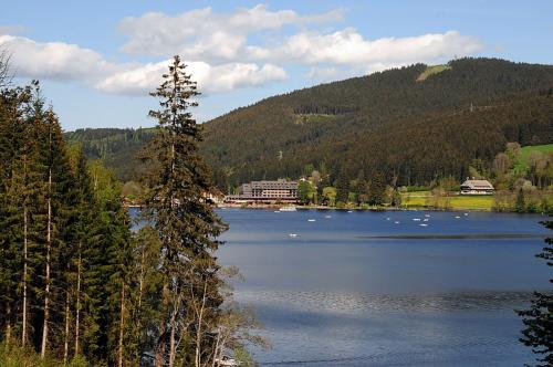 25.-1024px-The famous lake Titisee in the Schwarzwald - panoramio