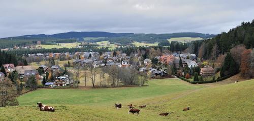 35.-Schwarzwald Hinterzarten 01
