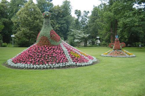 38.-1024px-Topiary pheasants, Bad Krozingen Kurpark (June 9, 2007)