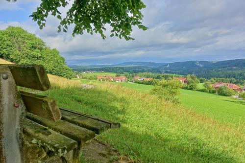 47.-1280px-Bonndorf im Schwarzwald Naturschutzgebiet Vogtsberg Bild 12