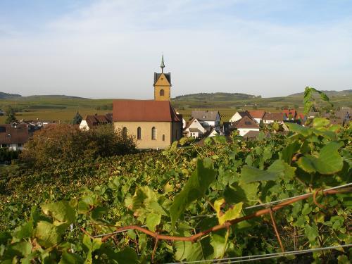 5.-Kaiserstuhl 2012 195