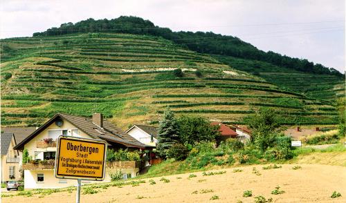 6.-Oberbergen Kaiserstuhl 2004