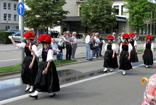 62.-Festumzug beim Deutschen Wandertag 2010 in Freiburg 14