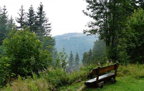 8.-Ausblick Richtung Seebruck - panoramio